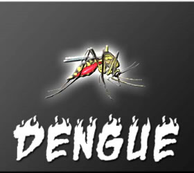 62 more Dengue cases detected