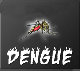 180 more Dengue cases come up