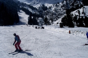 Gilgit Valley 5