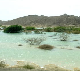 100 small dam to be constructed in Balochistan, official