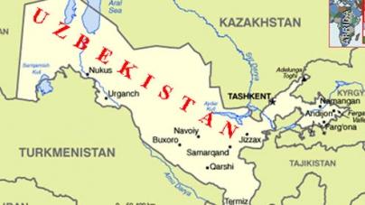 Pakistan, Uzbekistan vow to enhance connectivity; cooperate in trade, energy