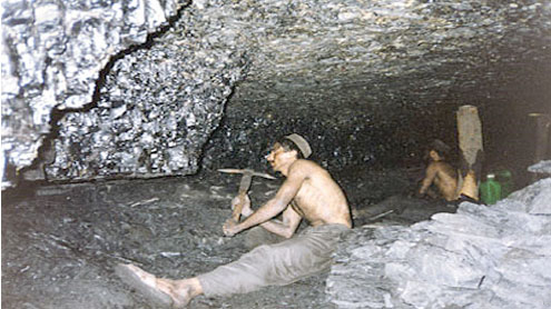Body set up to develop Fata mineral sector