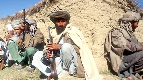 Pak efforts to fight terrorism