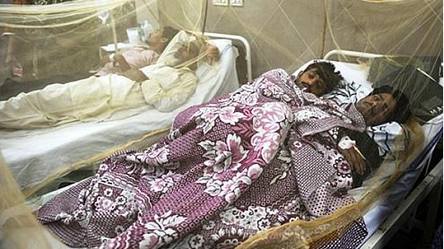 The Broken Down Pakistanis