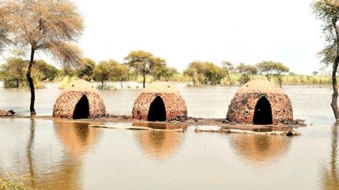Monsoon flooding: Sindh 'vulnerable to disasters for two more decades'