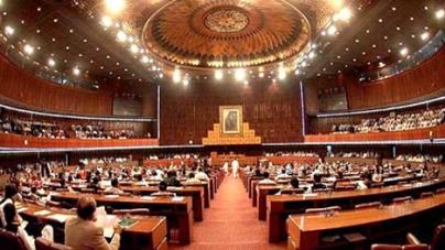 POL prices unite PML-N, govt allies