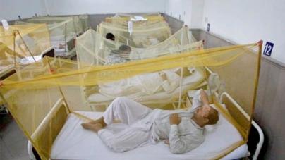 Dengue fever 'hits' Lahore