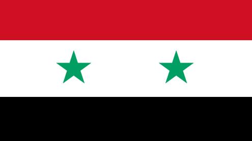 Syrian referendum