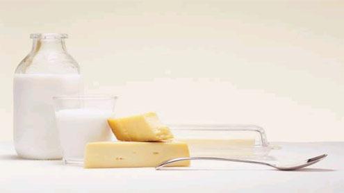 Cheese, milk diet vital for smarter brain