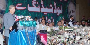 Shahbaz for long march on energy turmoil