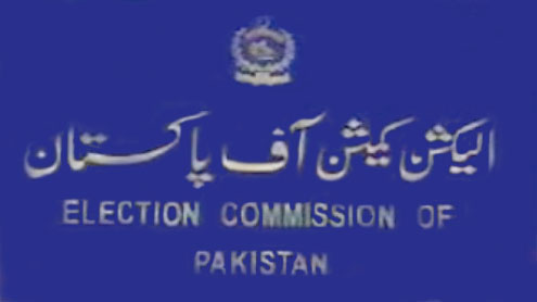 All institutions should mind their own business, ECP secy tells SC