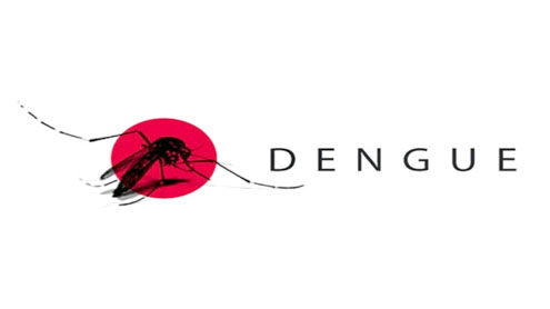 dengue diagnosis