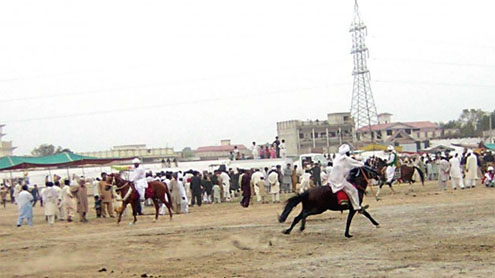 Cultural festival: After a three-year hiatus, horse and cattle show returns to DI Khan