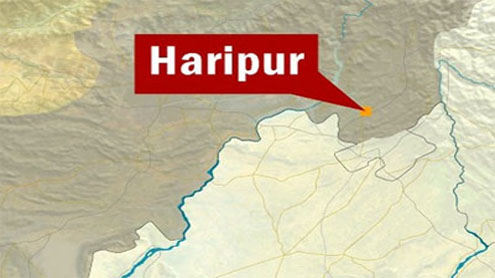 Seven dead, 10 injured in Haripur accident