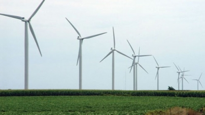 Sindh govt to allot 26,000 acres for windmills