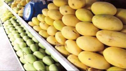 Sindh produces around 0.4m tonnes mangoes