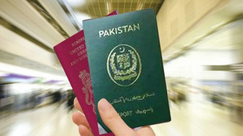 Dual nationality bill stirs up a storm in Senate