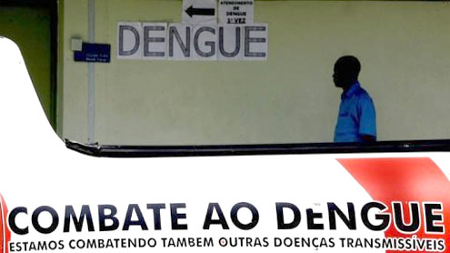 Brazil to breed GM mosquitoes to combat dengue
