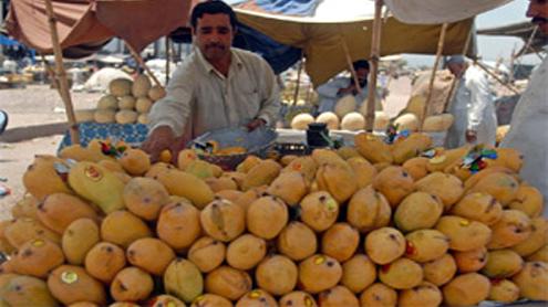 Pakistan leads world in mango shelving