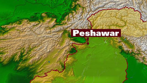 ANP energy conference: 'Decentralise power system to ease crisis'
