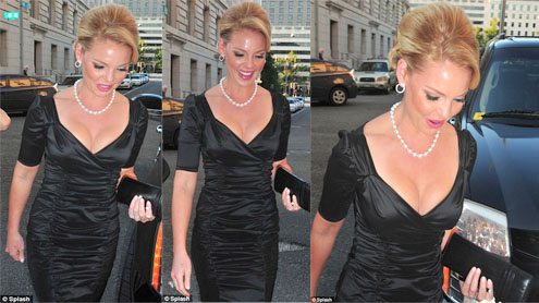 Katherine Heigl Wears A Very Low Cut Dress At Charity Event