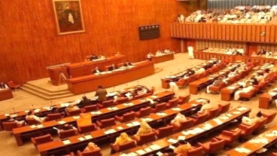 ISI not meddling in politics, Senate body told