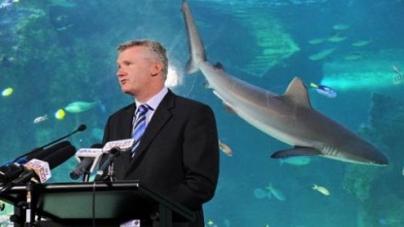 Australia declares world's largest marine reserve
