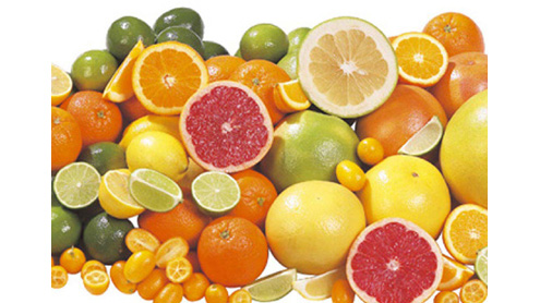 CRI playing vital role in promotion of citrus fruits