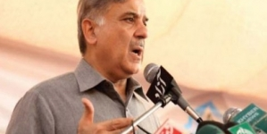 Punjab government striving to form a peaceful society: CM