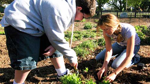 Schools Encourage Students to 'Grow Green'