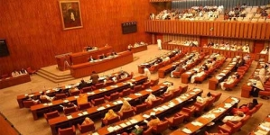 Senate session may snub caretakers