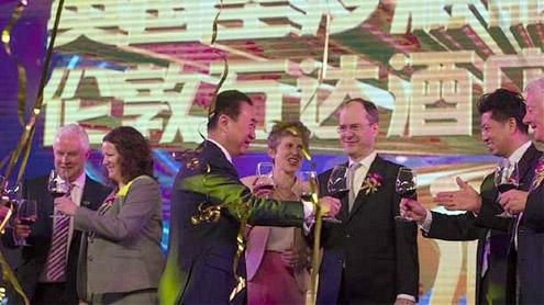 Chinese billionaire buys 007's yacht maker