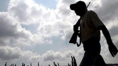 Mexico activists found dead by roadside in Guerrero state