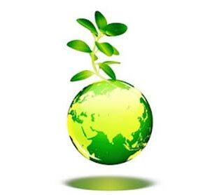 CDA to plant 500,000 saplings during tree plantation campaign