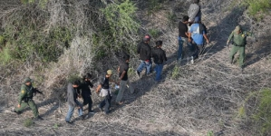 Mexico catches 220 undocumented migrants