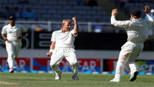 wicket celebrate