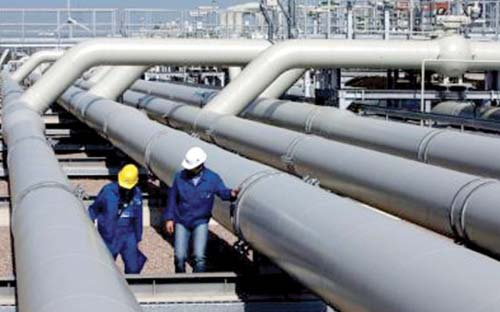 Higher Gas Supply to Power Plants Urged to Curb Shortages