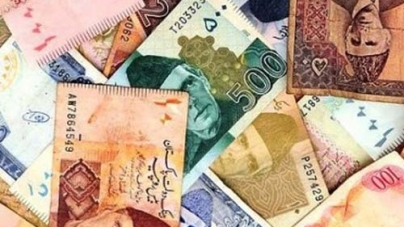 Effects of Currency Fluctuation on Economy