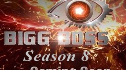 Pakistani Cricketer in Bigg Boss 8