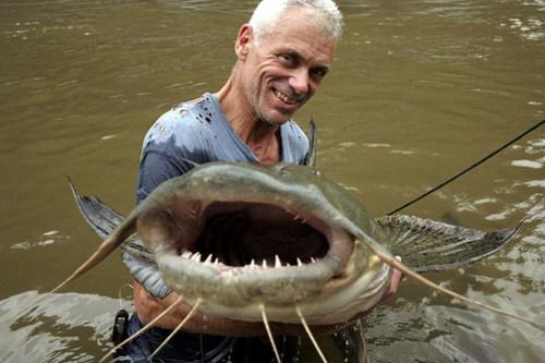 Goonch Fish