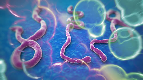Texas Health Worker Tests Positive for Ebola