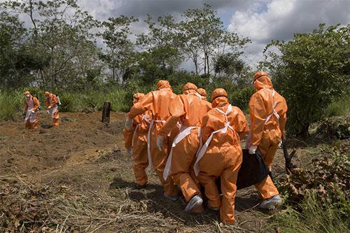 ebola healthcare systems