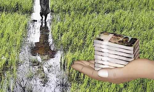 Rs10bn Loan Scheme for Flood-Hit Farmers