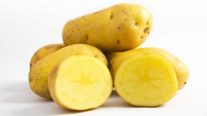 Eating potatoes may cut stomach cancer risk: study