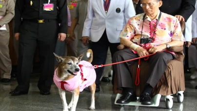 Thai Man May Go to Prison for Insulting King's Dog