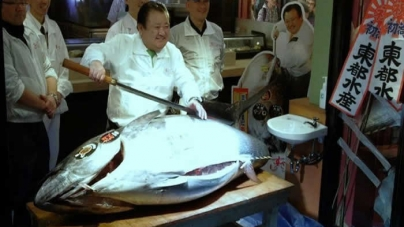 Japan sushi boss pays $117000 for endangered tuna