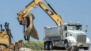 60,000 Pound Whale Carcass Removed From California Beach