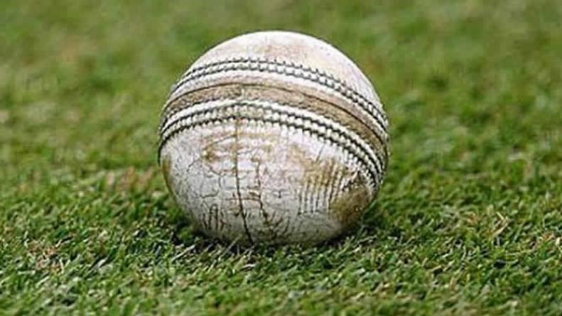 Women's Cricket: New Zealand Humble Pakistan To Take 4-0 Lead