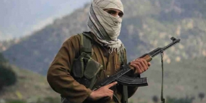 Afghanistan Taliban kill Five In Attack On MP's House