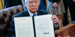 Donald Trump's Muslim Ban Is Fallacious